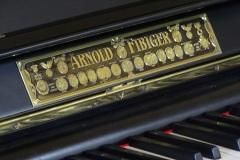 Arnold fibiger